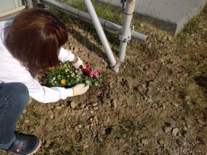 村井塗装で花壇作成