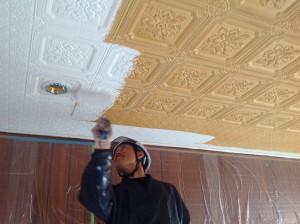 ジュラ天井塗装工事