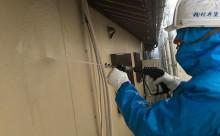 西三河ガイナ、木部保護塗装