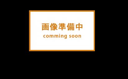 愛知県西三河西尾市安城市外壁塗装屋根塗装太陽光高反射遮熱塗装色褪せ欠けクラック汚れ屋根塗料上塗り使用後