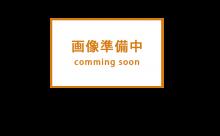 愛知県西三河東三河西尾市倉庫塗装外壁高反射遮熱シリコンサーモアイSi屋根ガイナ遮断熱セラミック色褪せ汚れ錆サビ雨垂れ剥がれ屋根洗浄