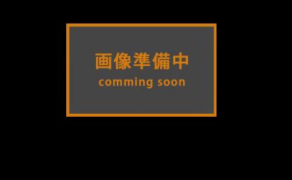 愛知県西三河東三河西尾市マンション塗替え外壁超低汚染遮熱シリコン塗装ミッドビスケット下塗り使用後